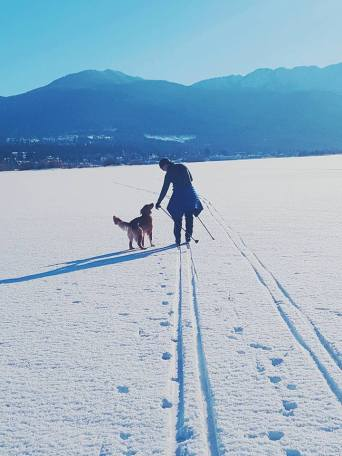 Cross Country Skiiing on Lake